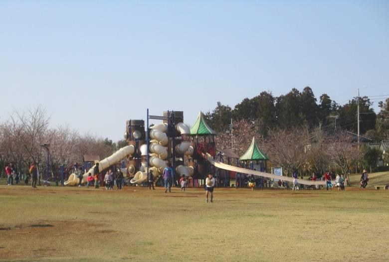 福岡 堰 さくら 公園